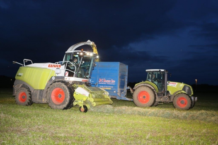 Grass silage by day and by night!