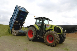 Carting silage to the clamp