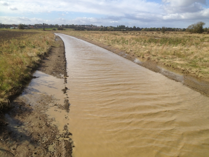 A large Foot drain to encourage breeding waders to the area