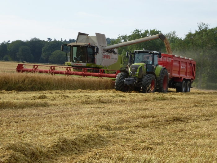 Combine and K-Two trailer hard at work