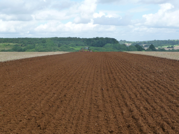 A spot of neat and tidy ploughing!
